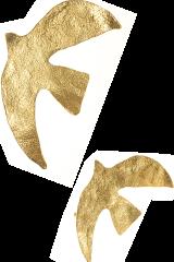 Dove Symbol